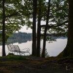 Quiet Seat, Lake Windermere © David Pheasy