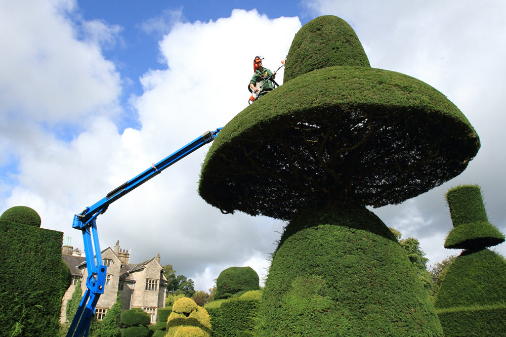 Trimming the Topiary, Levens Hall © Kenji Yamamoto