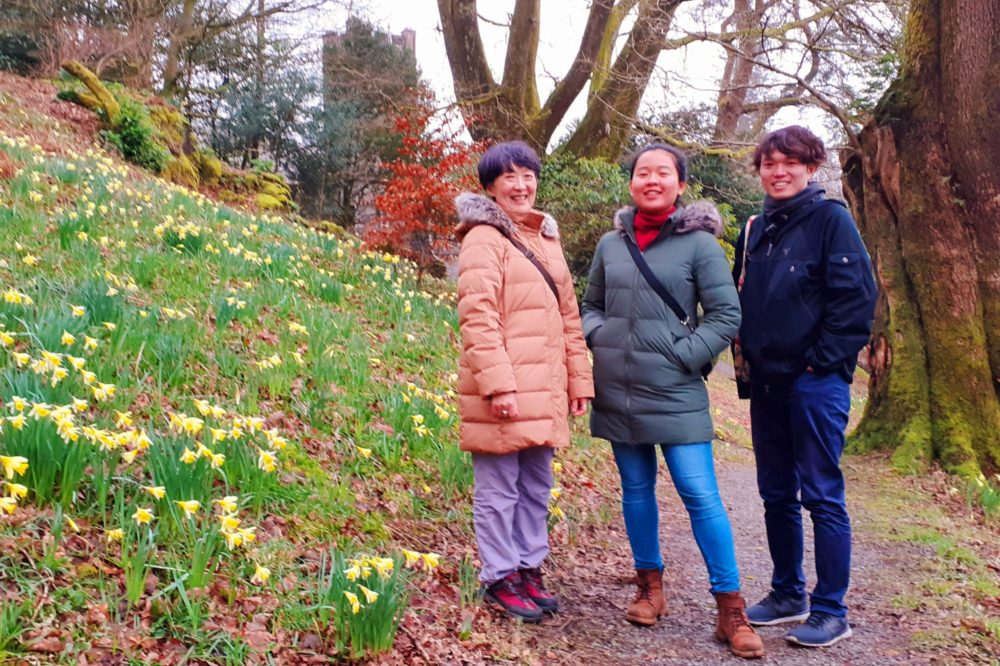 In Doras field at Rydal, the Lake District, March 2020