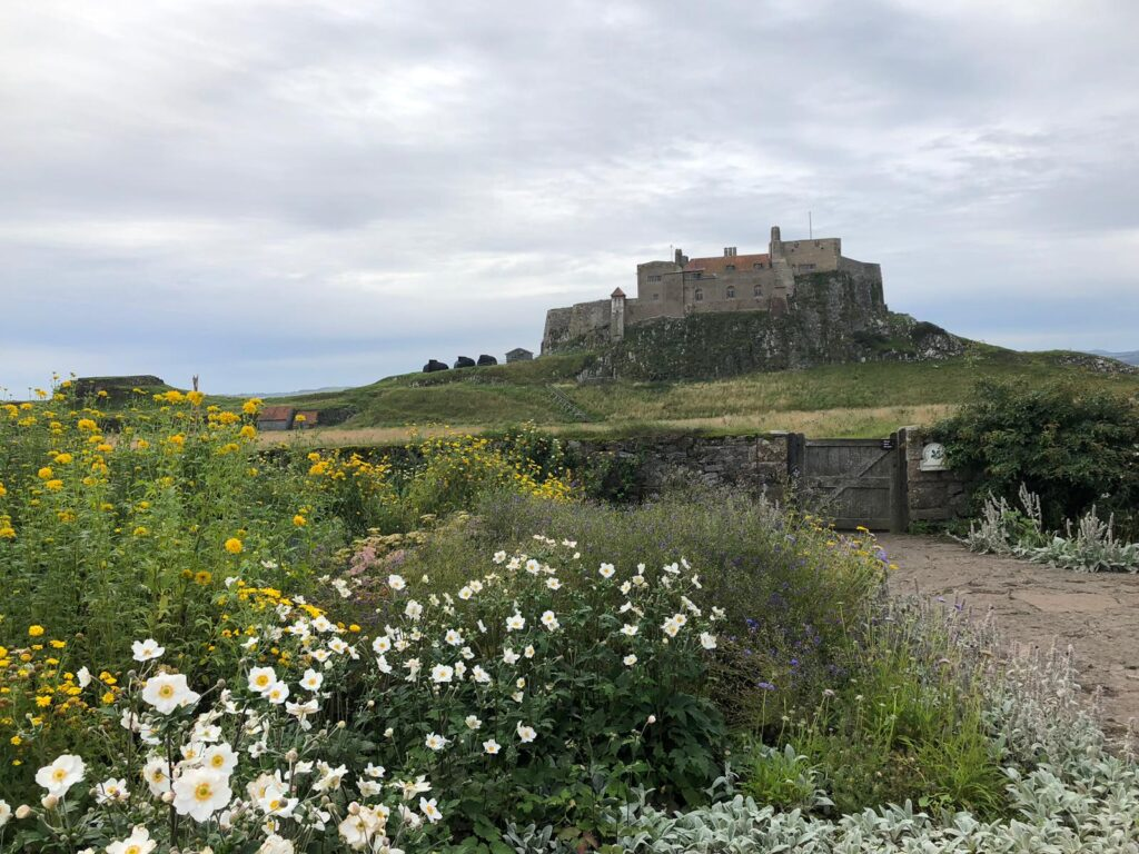 Lindisfarne Castle viewed from the garden