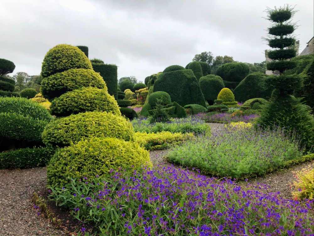 Tipsy topiary at Levens Hall