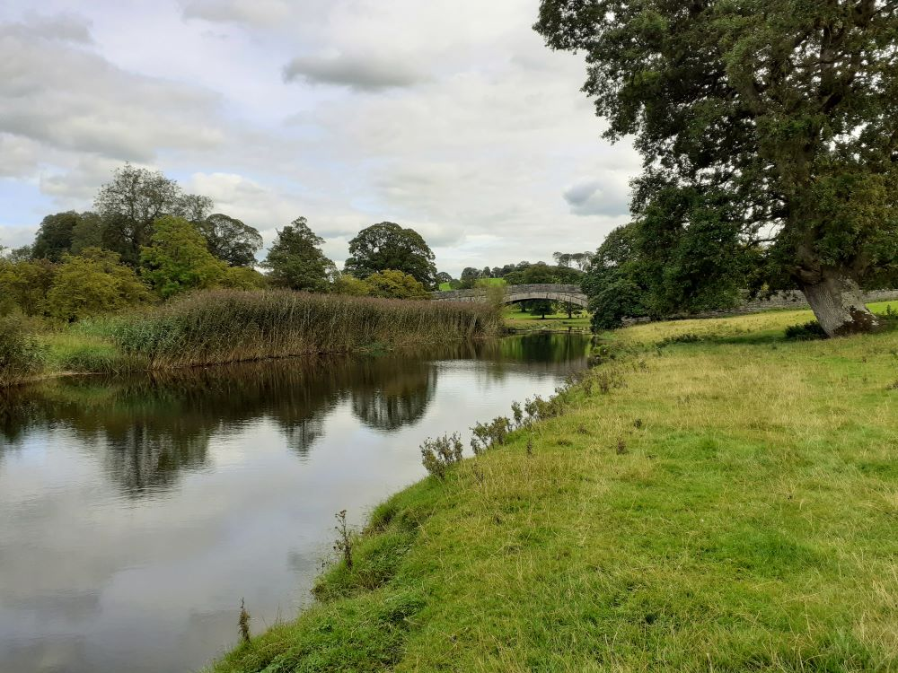 Following the river Bela home - the deer-park at Dallam Tower