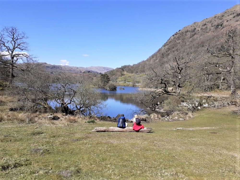 Rydal Water in the sunshine in spring