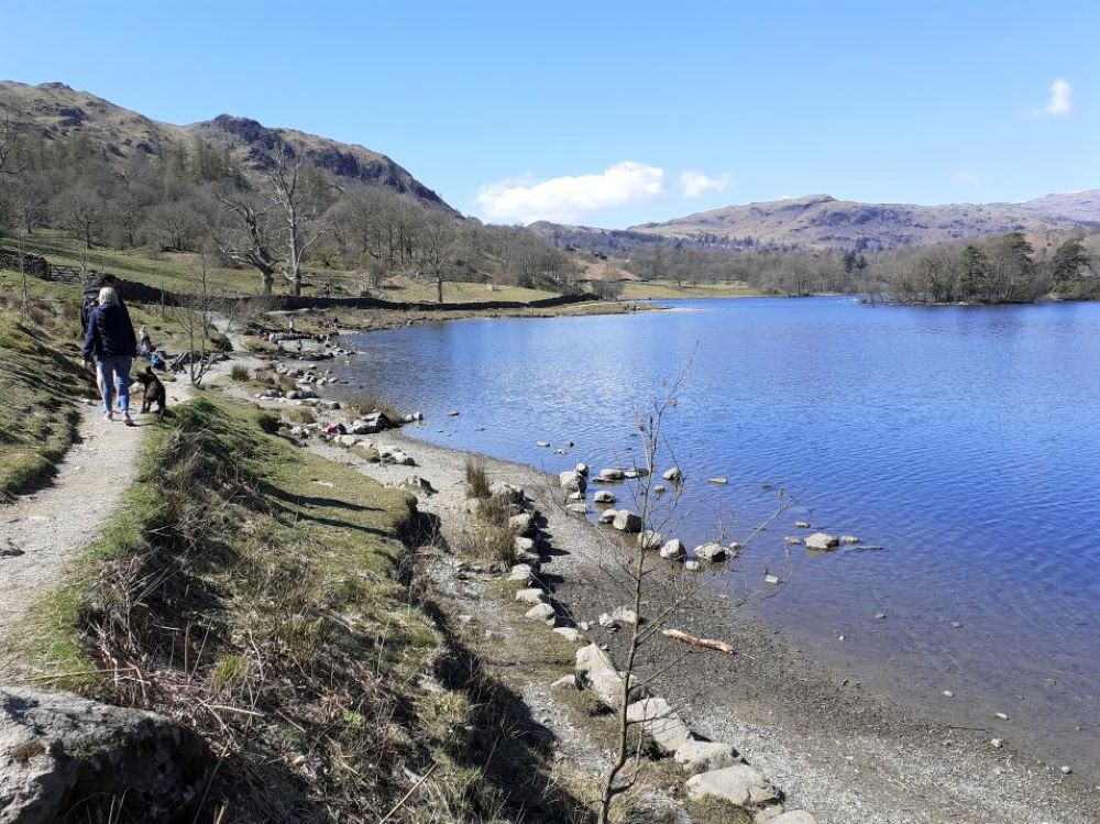 Dog-walkers at Rydal Water in spring