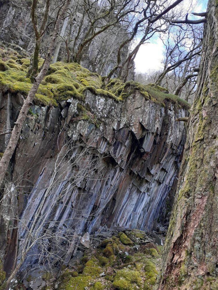 Rockface and woods near Millican Dalton's cave in Borrowdale