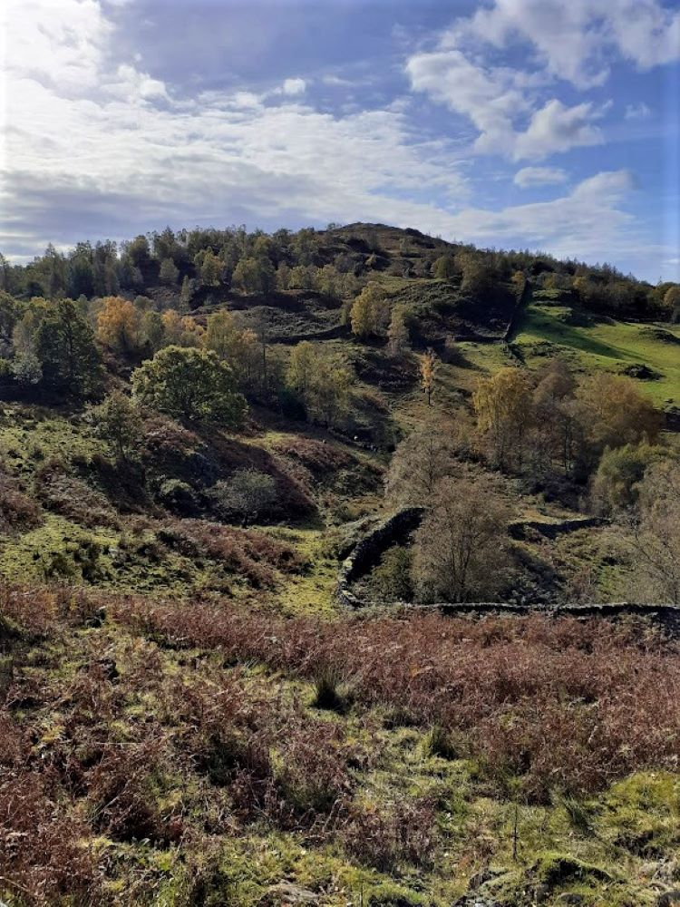 An autumnal scene in the Little Langdale valley
