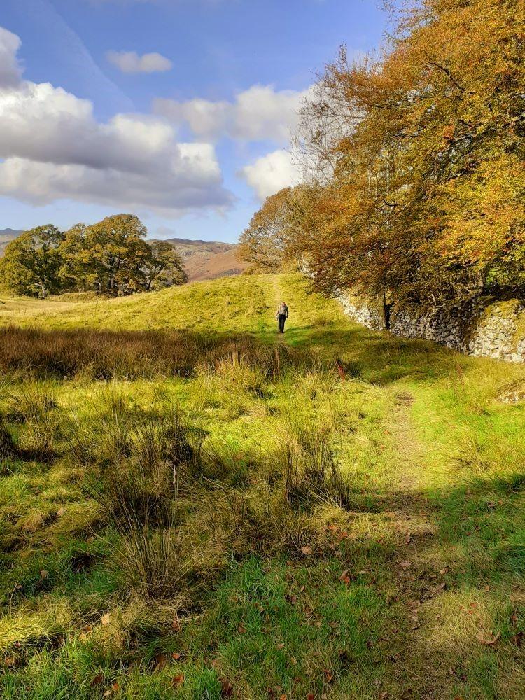 Autumn sunshine on the grasslands by Elterwater