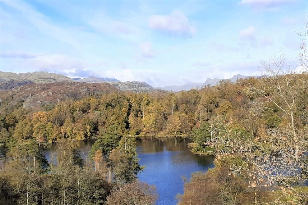 Tarn Hows with Langdale Pikes in the distance